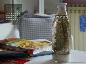 Calendario_gennaio_icona